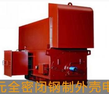 东元高压电机全密闭钢制外壳电机