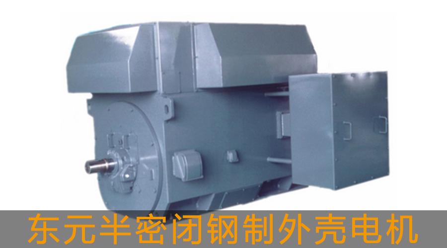 【东元】【高压电机】半密闭钢制外壳电机