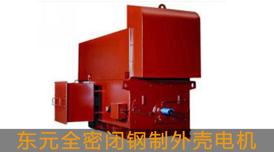 【东元】【高压电机】全密闭钢制外壳电机