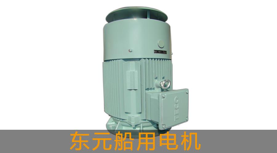 【东元】【特殊电机】AEEVBT/AEUVBT船用电机