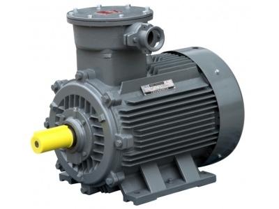 【东元】【防爆电机】Exd IIBT4/Exd IICT4 型电机