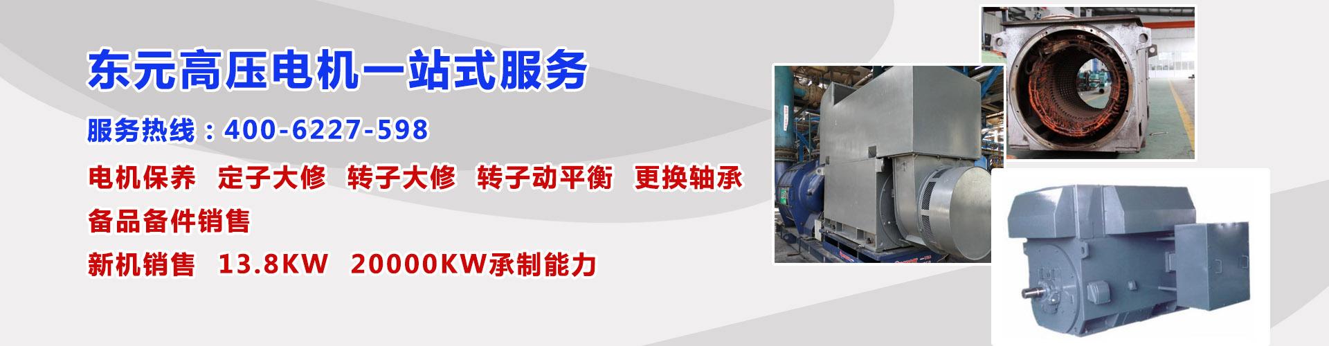 东元高压电机一站式服务
